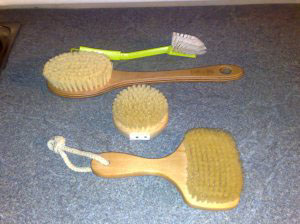 skin brushing brushes
